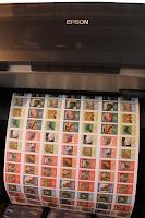 Imprenta Plotter, Epson Plotter, Tinta base agua, Zoo, Zoo Parque Editorial