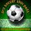 Pro Soccer Shin Pads's profile photo