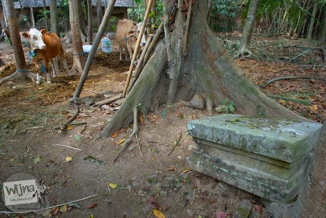 sejumlah peninggalan purbakala yang bisa dijumpai di dusun mangir, pajangan, yogyakarta