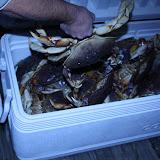 2010 Crab Feed - IMG_5565.JPG