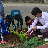 Gurukul Green Revolution (23).jpg