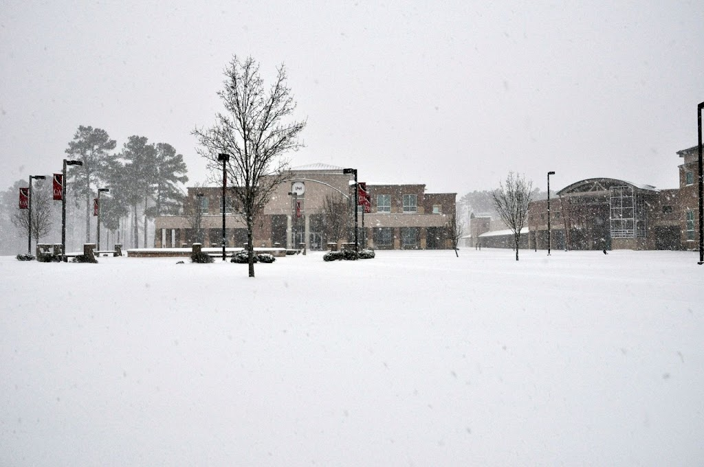 UACCH Snow Day 2011 - DSC_0009.JPG