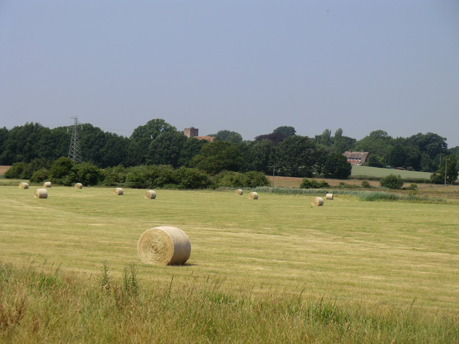 CIMG7987 Bales of hay and Warehorne church