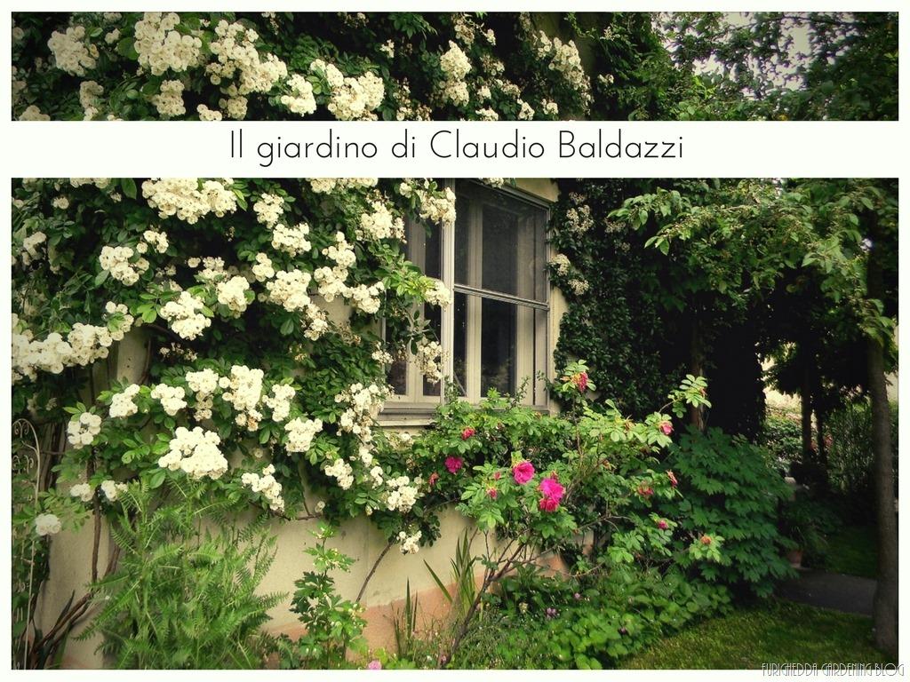 [Il+giardino+di+Claudio+%2812%29%5B3%5D]