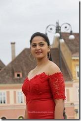 Anushka Shetty singam 3 i