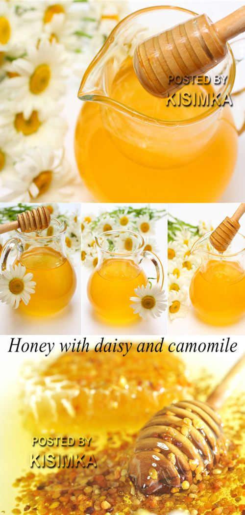 Stock Photo: Honey with daisy and camomile