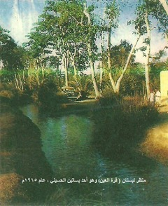 بستان قرة العين ــ الحسيني لحج عام 1965