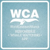 WCA Responsible Whale Watching