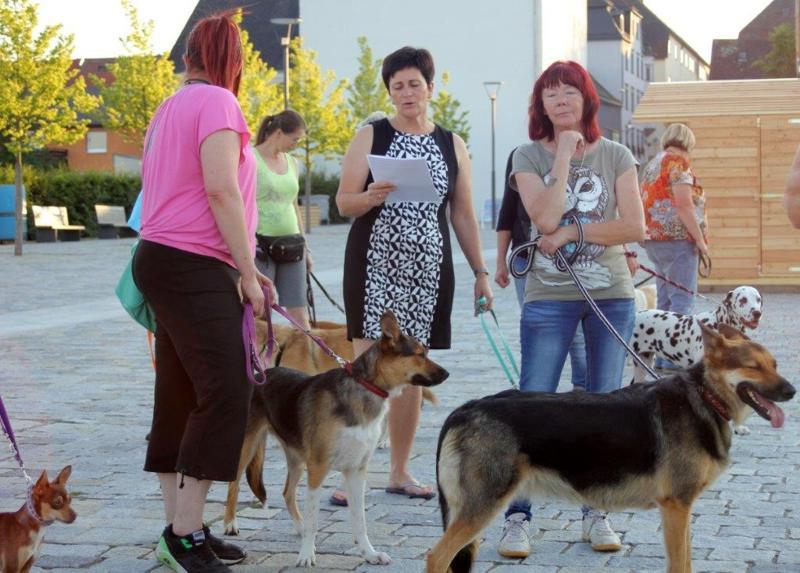 On Tour in Tirschenreuth: 30. Juni 2015 - Tirschenreuth%2B%252829%2529.jpg