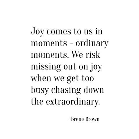 joy ordinary moments -- brene brown