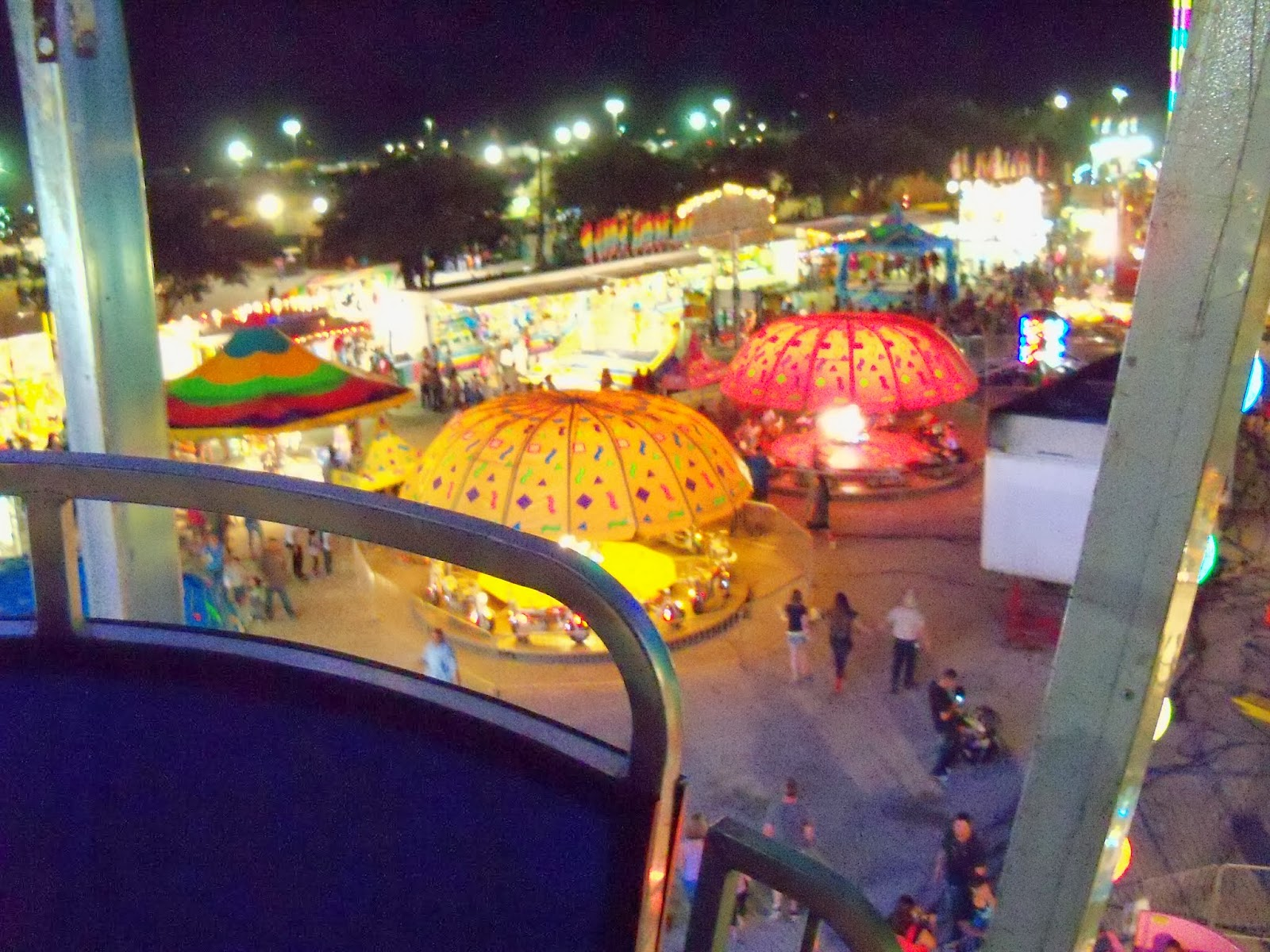 Fort Bend County Fair 2013 - 115_8043.JPG