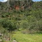 tn_portugal2010_410.jpg