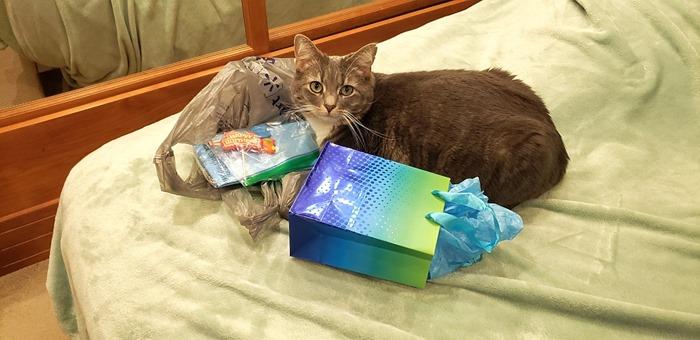 [Gabby+helping+with+birthday%5B4%5D]