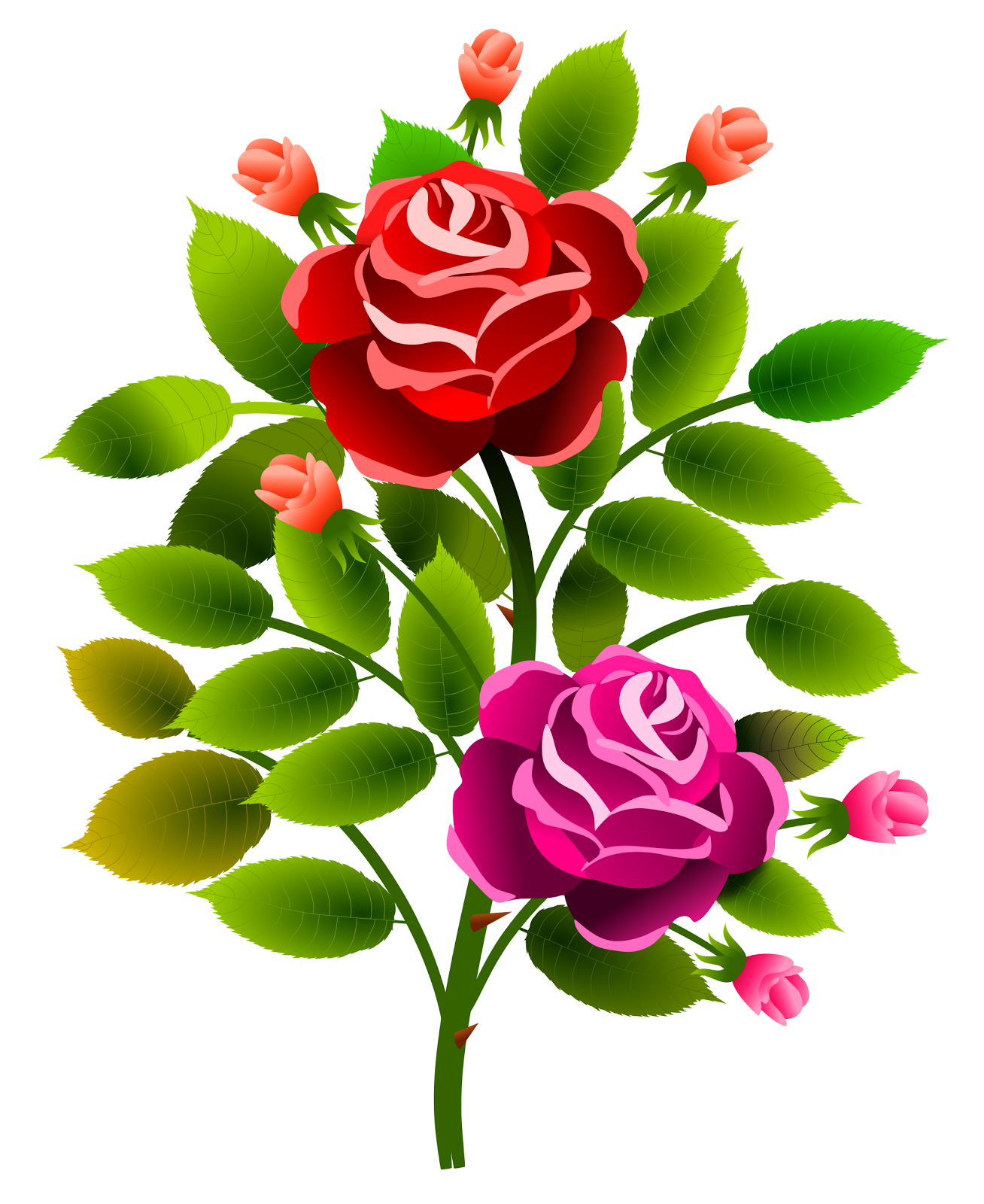[roses_13072017_2_aalmeidah4]
