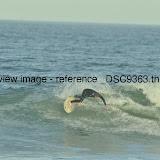 _DSC9363.thumb.jpg