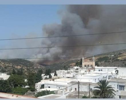 Φωτιά στην Πάρο : Έρχονται και πεζοπόρα τμήματα από την Αθήνα