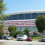 Falcons Roam The Dome