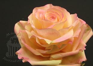 Photo: Rose aus Zucker