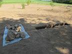 Připravené umyté kameny do základů stély.