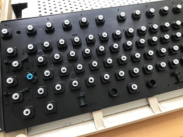 IMG 4599