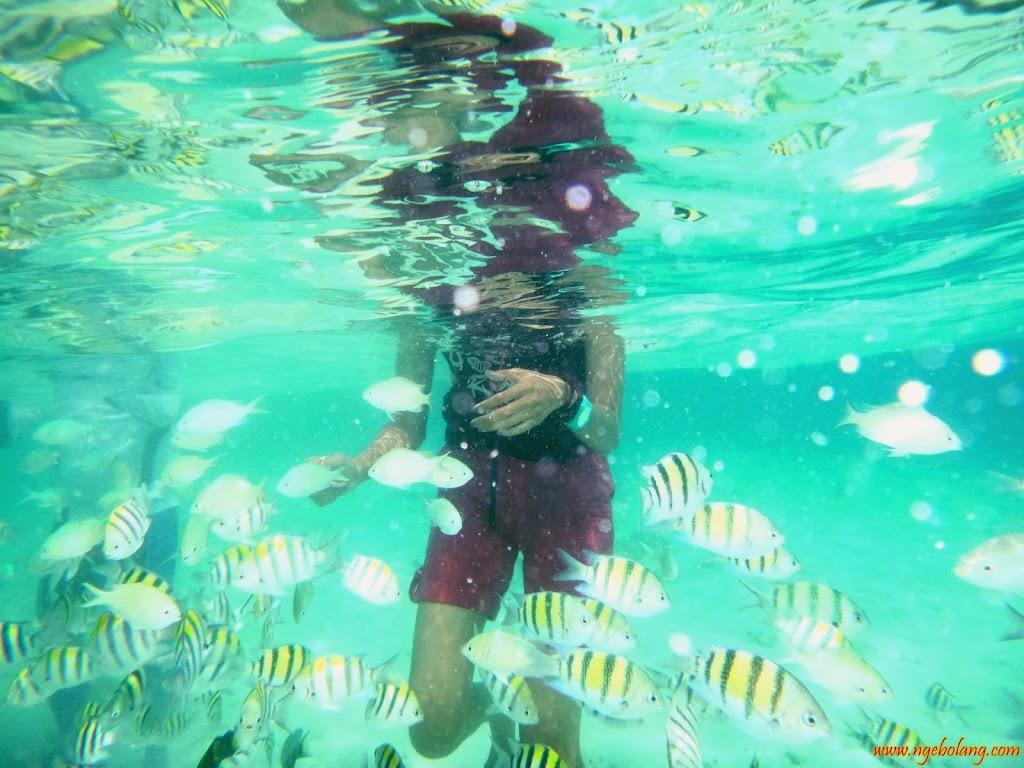 ngebolang-pulau-harapan-singletrip-nov-2013-wa-03 ngebolang-trip