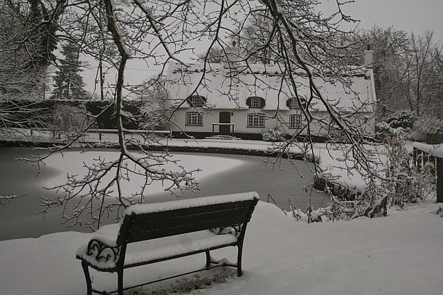 Woodhurst In the Snow - February 2009 - picture30.jpg