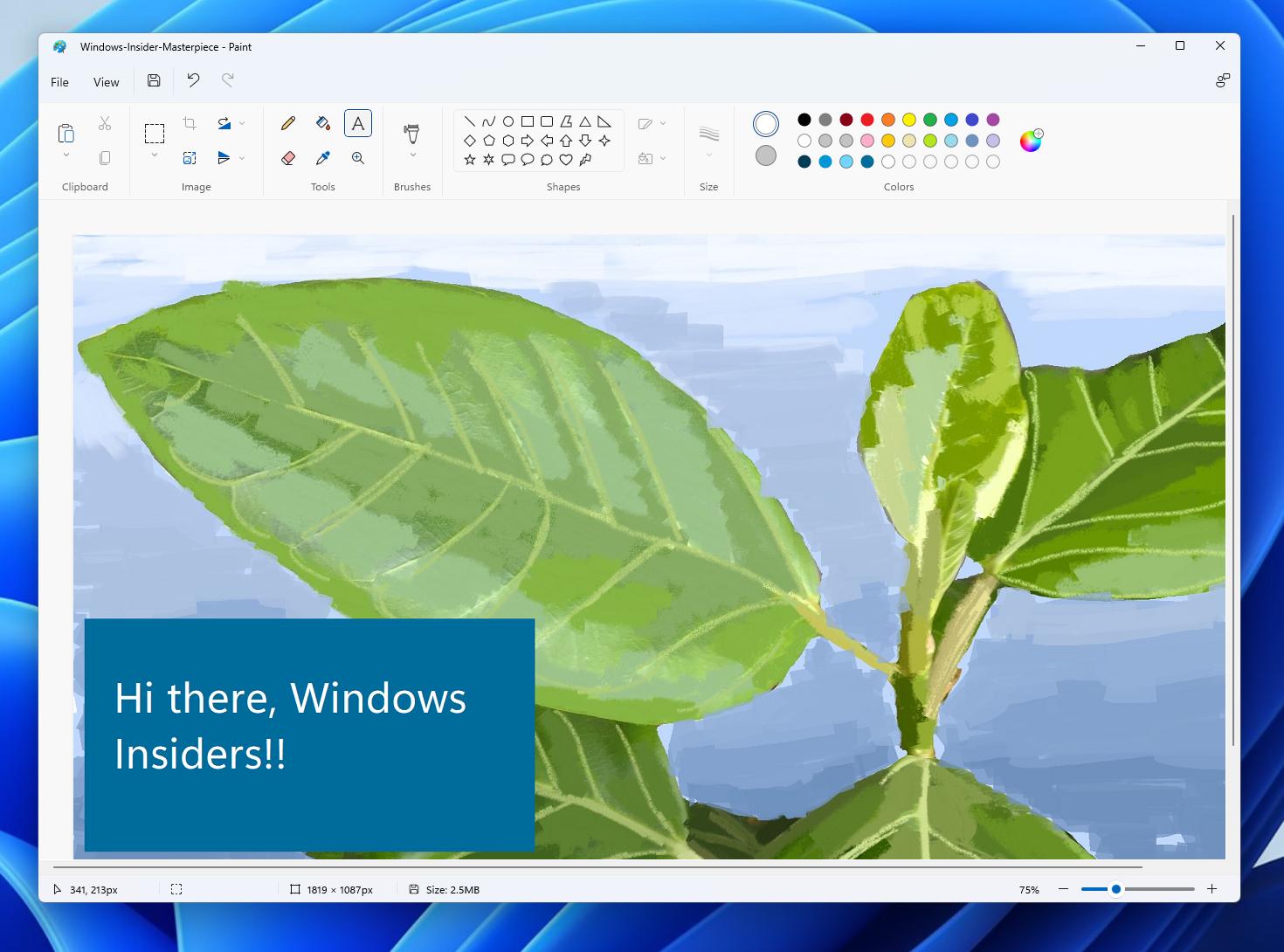 Disponibile il nuovo Paint per Windows 11