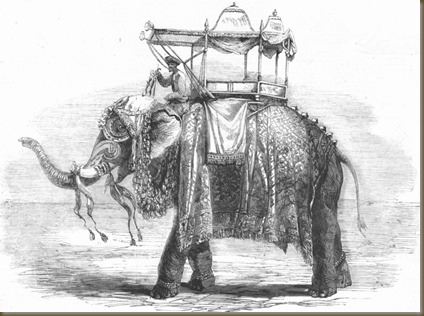 Elephant with state howdah