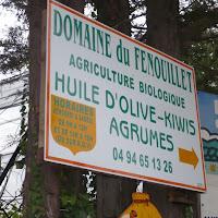 2010-10-17 - sortie N&D Hyeres - Domaine Fenouillet - France