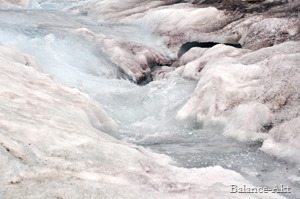 Banff-Jasper_ColumbiaIcefield2