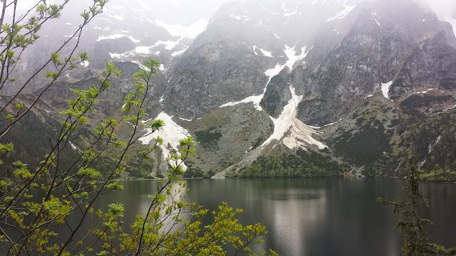 Zajęcia terenowe w Tatrzańskim Parku Narodowym - 2014-06-02%2B12.54.30.jpg