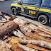 PRF apreende 11 m³ de madeira nativa sem licença ambiental na BR 330 em Jequié