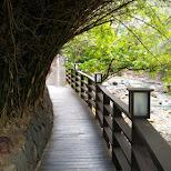 fascinating walkways along the beitou river in Beitou, T'ai-pei county, Taiwan