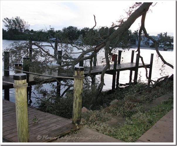 09-11-storm-damage2