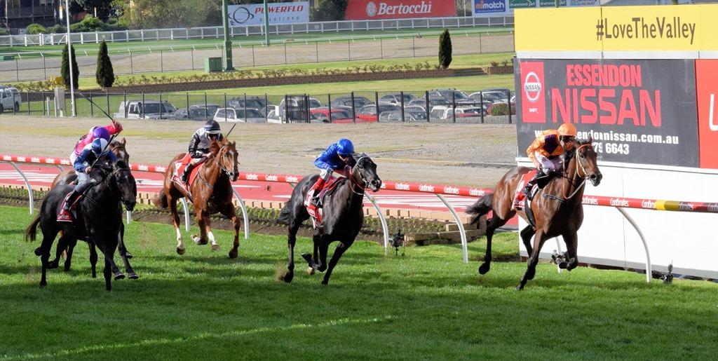[race-6_finish-15]