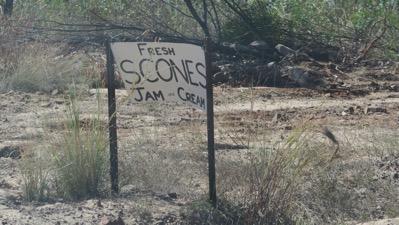 Scones Sign
