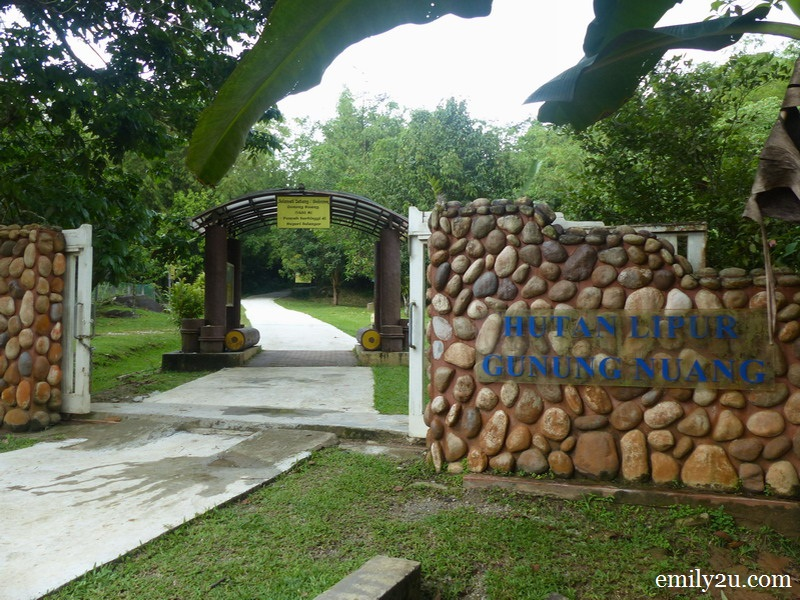 Gunung Nuang, Selangor's Highest Peak