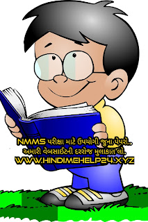 NMMS Old Papers 2013 ,NMMS Old paper ,Paper of NMMS 2013