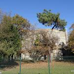 Forêt domaniale des Camaldules : château d'eau