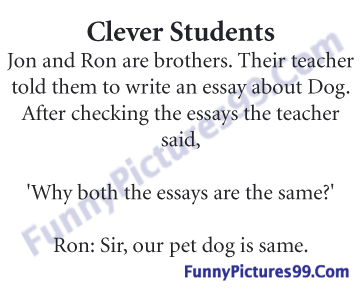 how to write a funny essay co how
