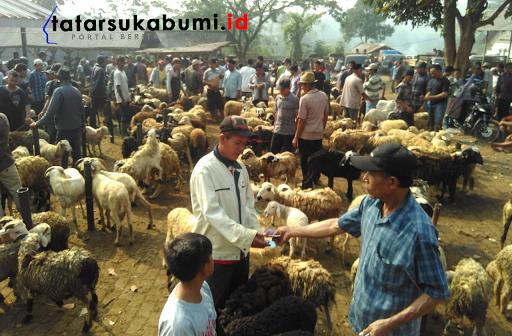 Pasar Hewan Dinas Peternakan Sukabumi, 600 ekor Setiap Hari Pasar
