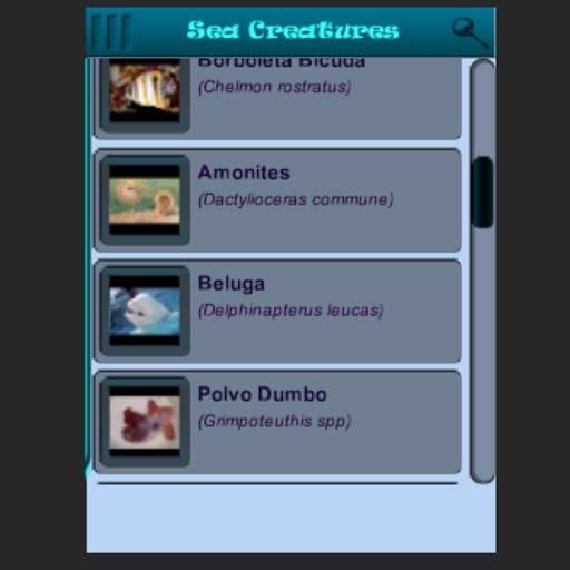 Sea Creatures 3D