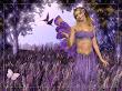 Lavendar Fairy Wallpaper Fairies