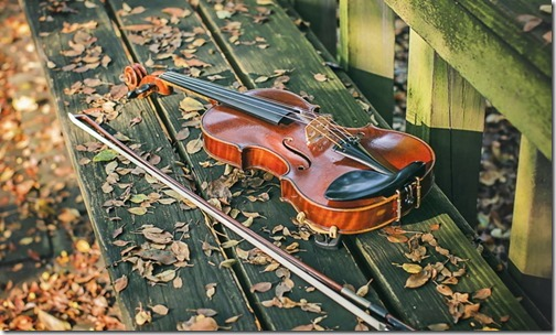 otoño violin 4