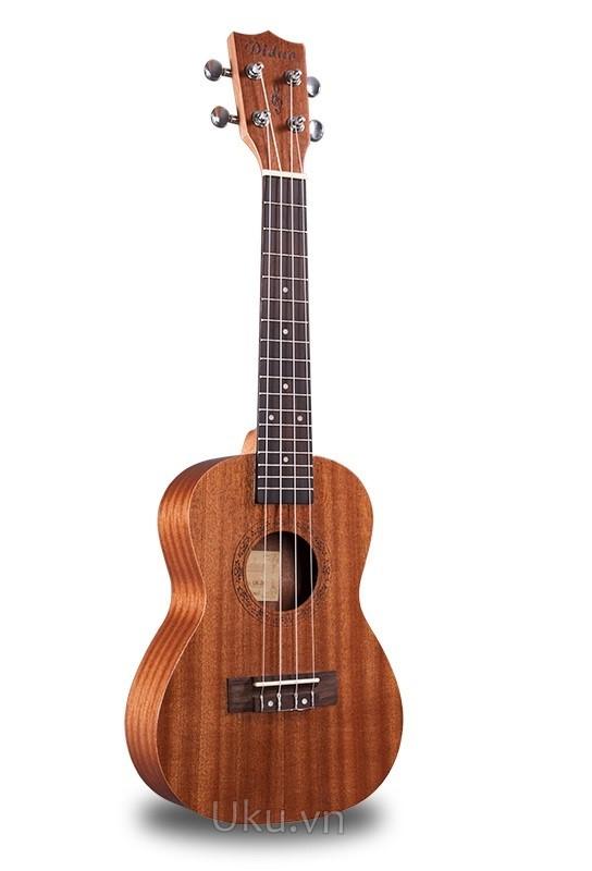 đàn ukulele diduo brand