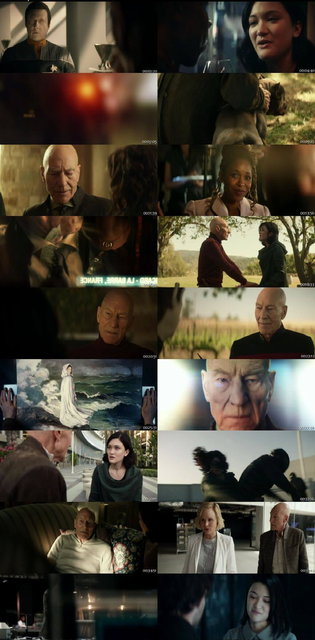 Screenshots Of Hindi Dubbed Show Star Trek: Picard 2020 Season 01 Complete All Episodes 300MB 720P HD