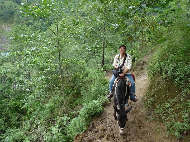 Chine .Yunnan,Menglian ,Tenchong, He shun, Chongning B - Picture%2B933.jpg