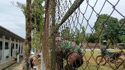 Bantu Cat Pagar Sekolah  Wujud Kemanunggalan TNI dan Rakyat