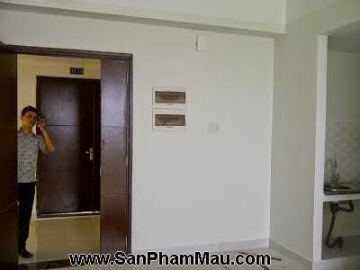 Thi công nội thất đồ gỗ căn hộ-5