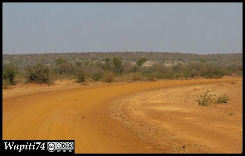 Balade australe... 11 jours en Namibie IMG_0537